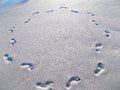 Circle of footprints in beach sand on wet Stock Image
