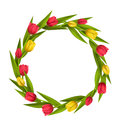 Circle frame with tulips red and yellow flowers on whit