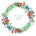 A circle frame, wreath with a floral ornament of the watercolor forest elements: berries, cones, leaves and branches Royalty Free Stock Photo