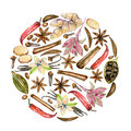 Circle illustration of watercolor spices cinnamon