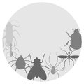 Circle insects creative design of Royalty Free Stock Photos