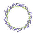 Circle Of Lavender Flowers
