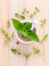 The circle of lemon basil hairy basil leaf and flower on woo wooden background Stock Photo