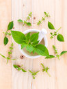 The circle of lemon basil hairy basil leaf and flower on woo wooden background Royalty Free Stock Photography