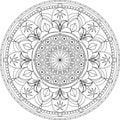 Circle mandala adult coloring page, with palm tree