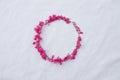 Circle pink flower frame of coral vine