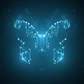 Circuit board background technology illustration butterfly illustration Royalty Free Stock Image