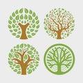 Circular circle tree plant leaf organic logo