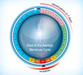 Circular flow chart showing days of menstruation Royalty Free Stock Images