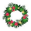 Circular frame of tropical flowers and plants element design vector image