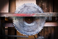 Circular saw detail of danger concept Royalty Free Stock Photo