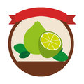 Circular shape with set collection lemons fruit and label