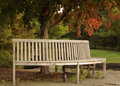 Circular wooden bench a park with autumn trees Stock Image