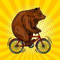 Circus bear on bicycle pop art vector illustration Royalty Free Stock Photo