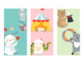 Circus cats cards vector cheerful illustration for kids with little domestic cartoon animals playing mammal