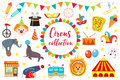Circus Collection, flat, cartoon style. Set isolated on a white background. Kit with elephant, tent, lion, Sealion, gun Royalty Free Stock Photo