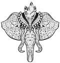 Circus Elephant head doodle on white sketch. Royalty Free Stock Photo