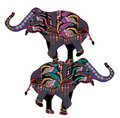 Circus elephants Stock Photo