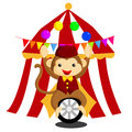 Circus monkey file format is eps Royalty Free Stock Image