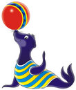 Circus Seal Royalty Free Stock Image