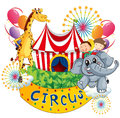 A circus show with kids and animals illustration of on white background Royalty Free Stock Images