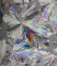 Citric acid crystals macro Royalty Free Stock Photo