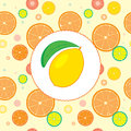 Citrus Design Template Stock Images
