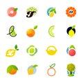 Citrus family - lemon, orange, lime, tangerine