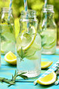 Citrus fizz with rosemary. Royalty Free Stock Photo