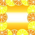 Citrus frame Royalty Free Stock Photography