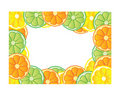 Citrus frame Royalty Free Stock Photo