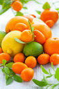 Citrus fresh fruits Royalty Free Stock Photos