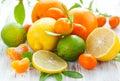 Citrus fresh fruits Royalty Free Stock Photo