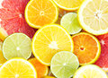 Citrus fresh slices of different types of orange lime mandarin grapefruit Stock Photography