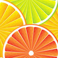 Citrus fruit background Royalty Free Stock Image