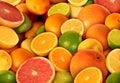 Picture : Citrus Fruit oranges  holding