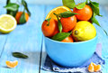 Citrus fruit in a bowl. Royalty Free Stock Photo