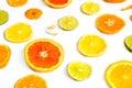 Citrus Fruit Design Royalty Free Stock Photo