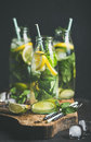 Citrus fruit and herbs infused sassi water in bottles Royalty Free Stock Photo