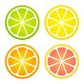 Citrus fruit icon set Royalty Free Stock Photo