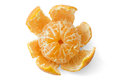 Citrus fruit isolated on white Stock Images