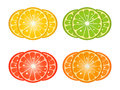 Citrus fruit slices Royalty Free Stock Photo
