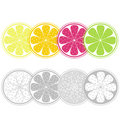 Citrus fruit slices in retro style isolated on whi Royalty Free Stock Image