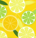 Citrus fruit on yellow background Royalty Free Stock Photo