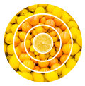 Citrus fruits background healthy collage Stock Image