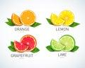Citrus fruits halves and quarter wedges, 4 realistic icons square with orange grapefruit lemon, isolated vector illustration
