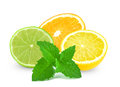 Citrus fruits and mint orange lime lemon on a white background Stock Photography