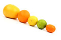 Citrus fruits in a row, tilted on a white background Royalty Free Stock Photo
