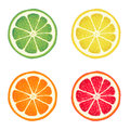 Citrus fruits set of illustrations of Stock Image