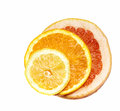 Citrus fruits sliced ripe and juicy lemon orange grapefruit Stock Images